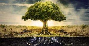el arbol sagrado de la vida